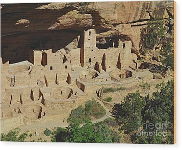 Cliff Palace Mesa Verde Wood Print by Debby Pueschel
