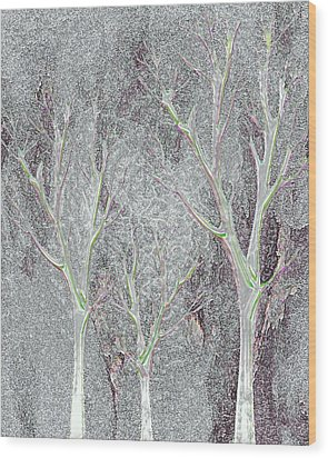 Cold Day In The Park Wood Print by Mimo Krouzian