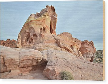 Wood Print featuring the photograph Colored Castle In Valley Of Fire by Ray Mathis
