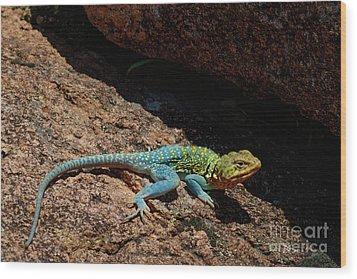 Colorful Lizard II Wood Print