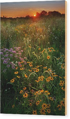 Colors Of Summer Wood Print