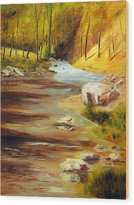 Cool Mountain Stream Wood Print by Phil Burton