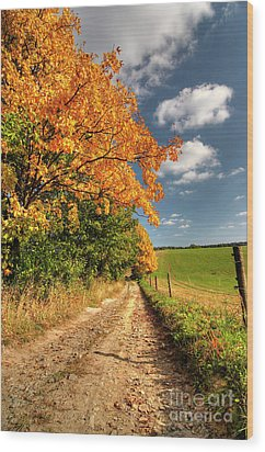 Country Road And Autumn Landscape Wood Print by Michal Boubin