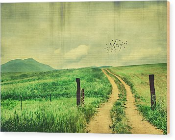 Country Roads Wood Print by Darren Fisher