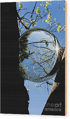 Crystal Reflection Wood Print by Deborah Klubertanz