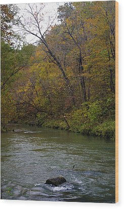 Current River 8 Wood Print by Marty Koch