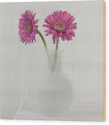 Wood Print featuring the photograph Gerbera Daisy Love by Kim Hojnacki