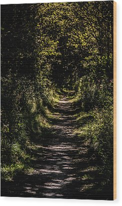 Wood Print featuring the photograph Deep by Odd Jeppesen