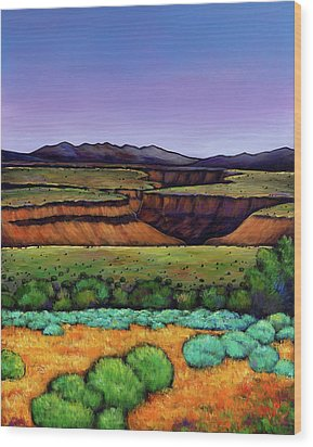 Desert Gorge Wood Print by Johnathan Harris