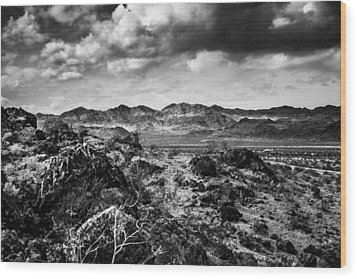 Wood Print featuring the photograph Deserted Red Rock Canyon by Jason Moynihan