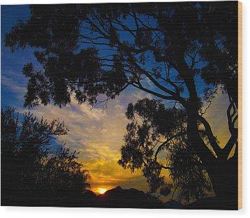 Dream Sunrise Wood Print by Mark Blauhoefer