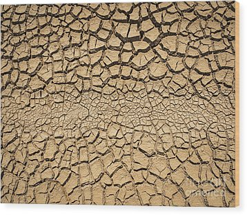 Wood Print featuring the photograph Dried And Cracked Soil In Arid Season. by Tosporn Preede