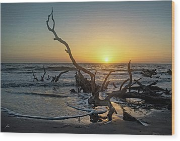 Driftwood Beach Wood Print by Patricia Turo
