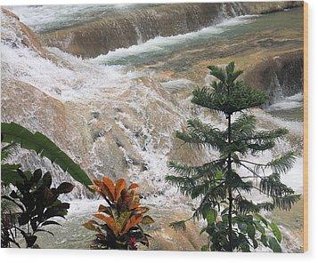 Dunns River Falls Wood Print