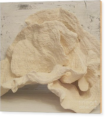 Ear Coral Wood Print