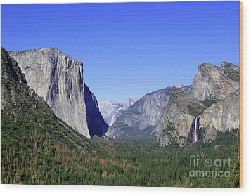 Wood Print featuring the photograph El Capitan by Joseph G Holland