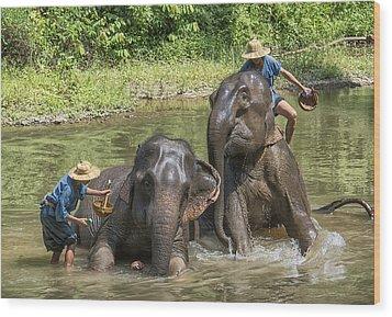 Wood Print featuring the photograph Elephant Bath by Wade Aiken