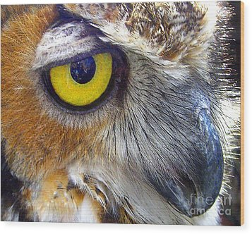 Wood Print featuring the photograph Eye Of The Owl by Merton Allen