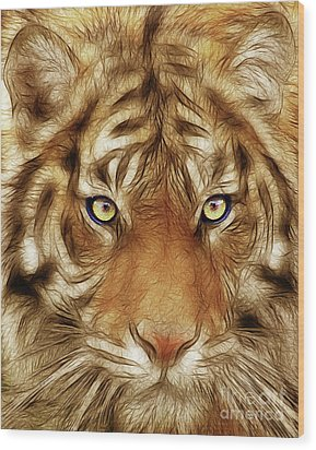 Eye Of The Tiger Wood Print by Wingsdomain Art and Photography