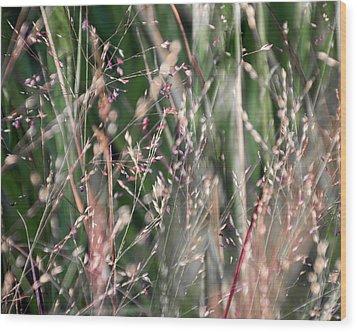 Fairies In The Grass - Wood Print
