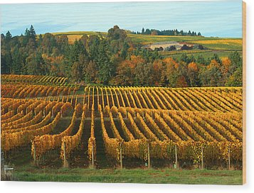Fall In A Vineyard Wood Print