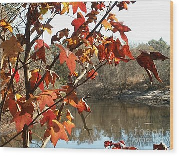 Fall On The Withlacoochee River Wood Print by Theresa Willingham