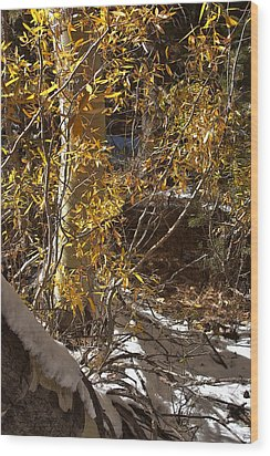 Wood Print featuring the painting Fall Sierra Nevada Larry Darnell by Larry Darnell