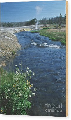 Firehole River Wood Print by Stan and Anne Foster