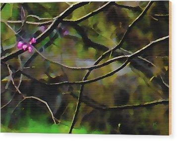 First Sign Of Spring Wood Print by Gerlinde Keating - Galleria GK Keating Associates Inc