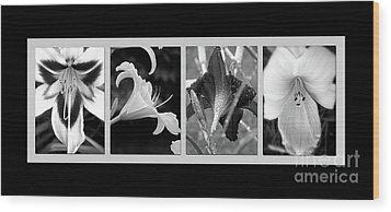 Floral Collage Wood Print by Sue Stefanowicz
