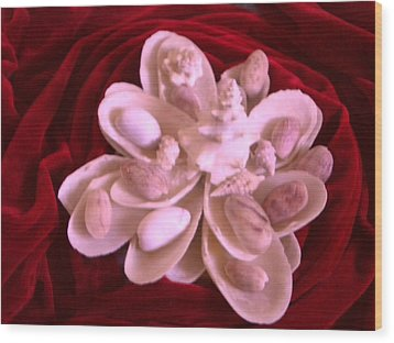 Flower Shell Wood Print by Arlin Jules