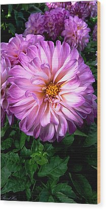 Wood Print featuring the photograph Flowers by Bernd Hau