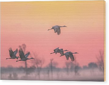 Flying Into The Light And Fog Wood Print by Kelly Marquardt