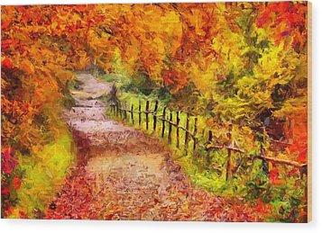 Fall Foliage Path 2 Wood Print