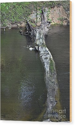 Wood Print featuring the photograph Footbridge by Skip Willits