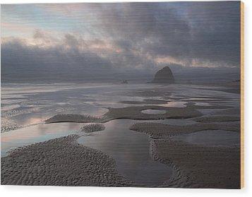 Forbidden Coast Wood Print