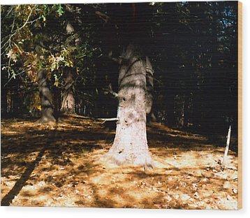 Forest Entrance Wood Print by Paul Sachtleben