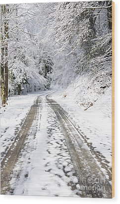Forest Service Road 76 Wood Print by Thomas R Fletcher