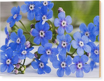 Forget-me-not Wood Print by Chevy Fleet