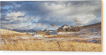 Forgotten Farmhouse Wood Print by Theresa Tahara