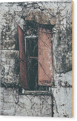 Wood Print featuring the photograph Forgotten Homestead by Kim Hojnacki