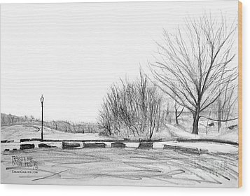 Franklin Park Wood Print by Takao Shinzawa