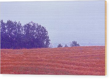 Wood Print featuring the photograph Freshly Cut Hay Ae by Lyle Crump