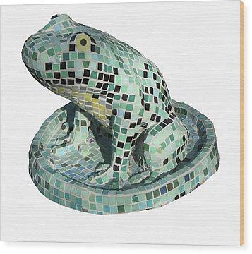 Frog Wood Print by Katia Weyher