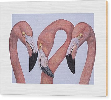 Flamingos From The Neck Up Wood Print