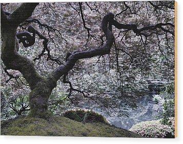 Garden View In Blue Wood Print by Don Schwartz