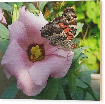 Garden Visitor Wood Print