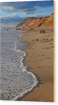 Gayhead Cliffs Marthas Vineyard Wood Print by Dave Mills