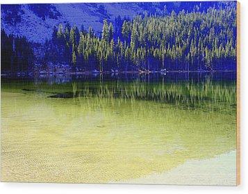 Ghostly Reflections Wood Print by Lynn Bawden