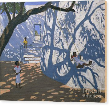 Girl On A Swing India Wood Print by Andrew Macara